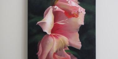 Pink Gladioli by Sylvia Stanford